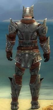 Warrior Asuran Armor M gray back