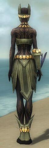 File:Ritualist Elite Kurzick Armor F gray back.jpg
