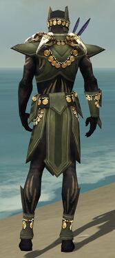 Ritualist Elite Kurzick Armor M gray back
