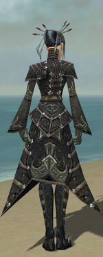 Necromancer Elite Cultist Armor F gray back
