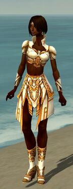 Paragon Asuran Armor F dyed front