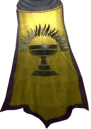 File:DMH Guild Cape.jpg