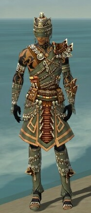 File:Ritualist Elite Imperial Armor M gray front.jpg