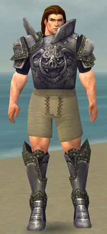 File:Warrior Platemail Armor M gray chest feet front.jpg