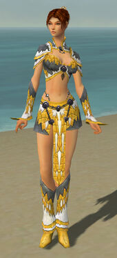 Elementalist Iceforged Armor F dyed front