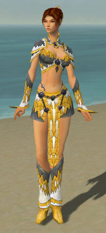 File:Elementalist Iceforged Armor F dyed front.jpg