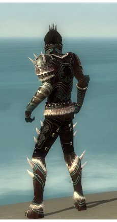 File:Necromancer Norn Armor M gray back.jpg