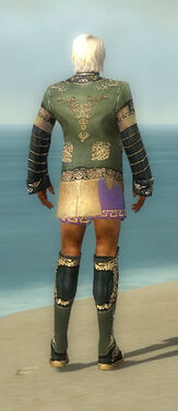 Mesmer Elite Canthan Armor M gray chest feet back