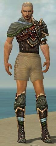 File:Ranger Luxon Armor M gray chest feet front.jpg