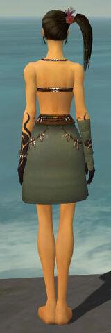 File:Ritualist Shing Jea Armor F gray arms legs back.jpg