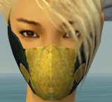 File:Assassin Seitung Armor F dyed head front.jpg