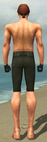 File:Mesmer Courtly Armor M gray arms legs back.jpg