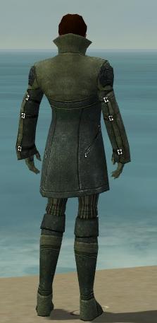File:Mesmer Kurzick Armor M gray back.jpg