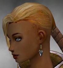 File:Monk Kurzick Armor F gray earrings.jpg