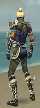Assassin Norn Armor M gray back