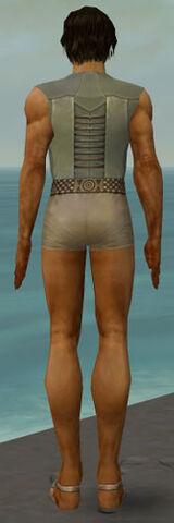 File:Dervish Istani Armor M gray chest feet back.jpg