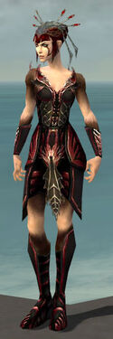 Necromancer Istani Armor F dyed front