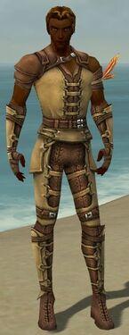 Ranger Ascalon Armor M dyed front