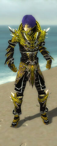 File:Necromancer Elite Luxon Armor M dyed front.jpg