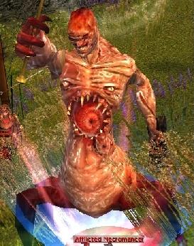 File:Afflicted Necromancer.jpg