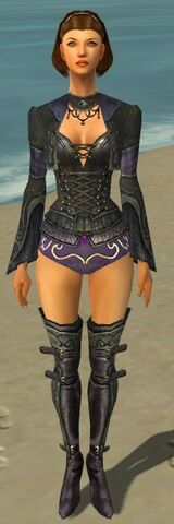 File:Mesmer Elite Rogue Armor F gray chest feet front.jpg