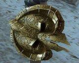 Starter Shield