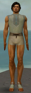 Dervish Istani Armor M gray chest feet front