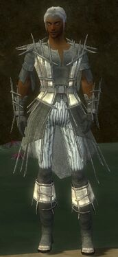 Elementalist Primeval Armor M gray front