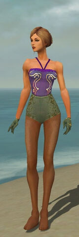 File:Mesmer Elite Canthan Armor F gray arms legs front.jpg