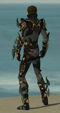 Assassin Elite Kurzick Armor M gray back