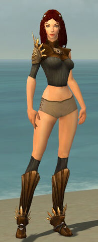 File:Ranger Elite Sunspear Armor F gray chest feet front.jpg