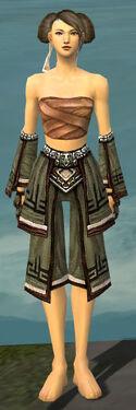 Monk Kurzick Armor F gray arms legs front