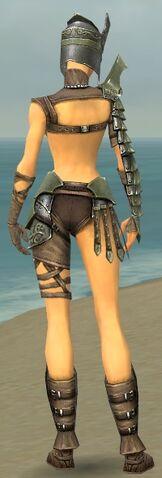 File:Warrior Elite Gladiator Armor F gray back.jpg