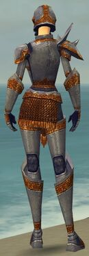 Warrior Platemail Armor F dyed back