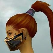 File:Assassin Elite Exotic Armor F dyed head side.jpg