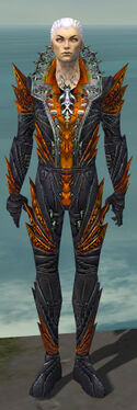 Necromancer Krytan Armor M dyed front