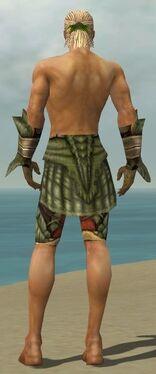 Ranger Elite Drakescale Armor M gray arms legs back