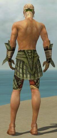File:Ranger Elite Drakescale Armor M gray arms legs back.jpg