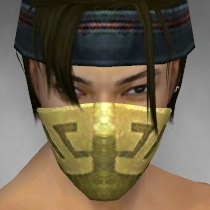 File:Assassin Canthan Armor M dyed head front.jpg