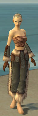 Monk Norn Armor F gray arms legs front
