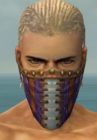 File:Ranger Luxon Armor M dyed head front.jpg