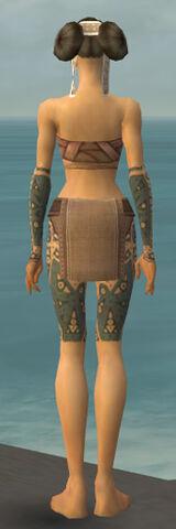 File:Monk Star Armor F gray arms legs back.jpg