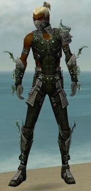 Assassin Elite Luxon Armor M gray front