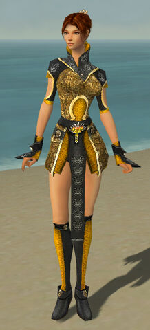 File:Elementalist Canthan Armor F dyed front.jpg