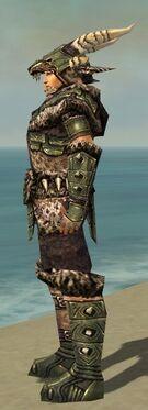 Warrior Elite Charr Hide Armor M gray side alternate