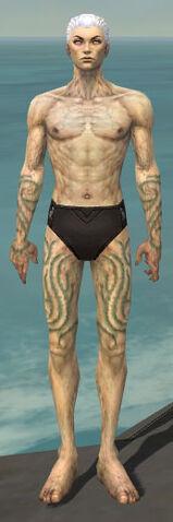 File:Necromancer Scar Pattern Armor M gray arms legs front.jpg