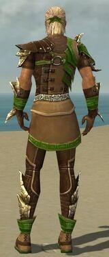 Ranger Asuran Armor M dyed back