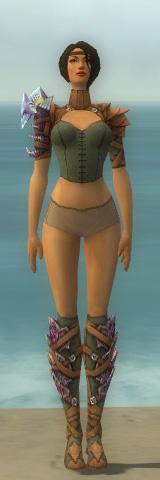 File:Ranger Drakescale Armor F gray chest feet front.jpg