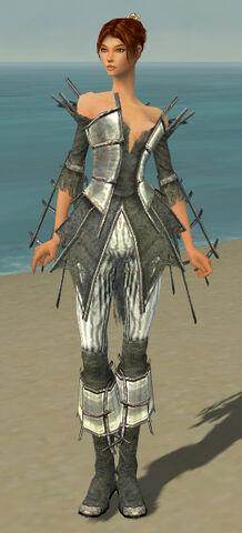 File:Elementalist Primeval Armor F gray front.jpg