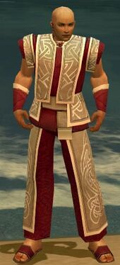 Monk Tyrian Armor M dyed front